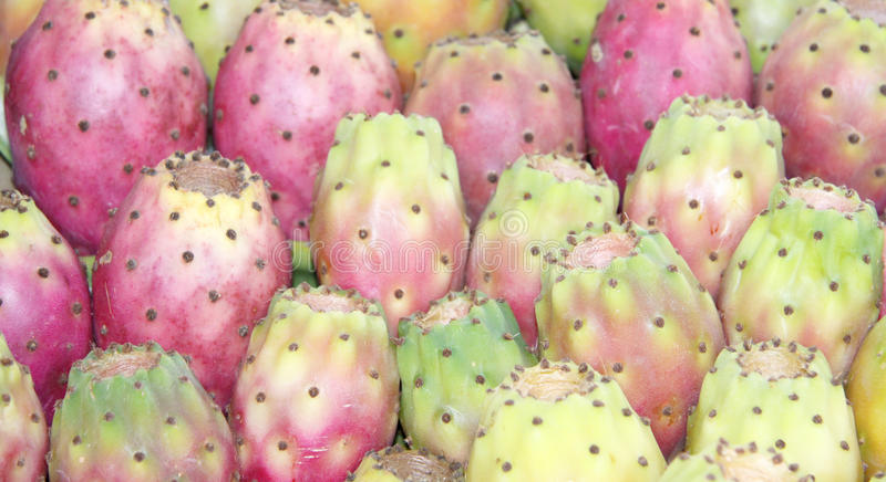 Prickly pears background stock images