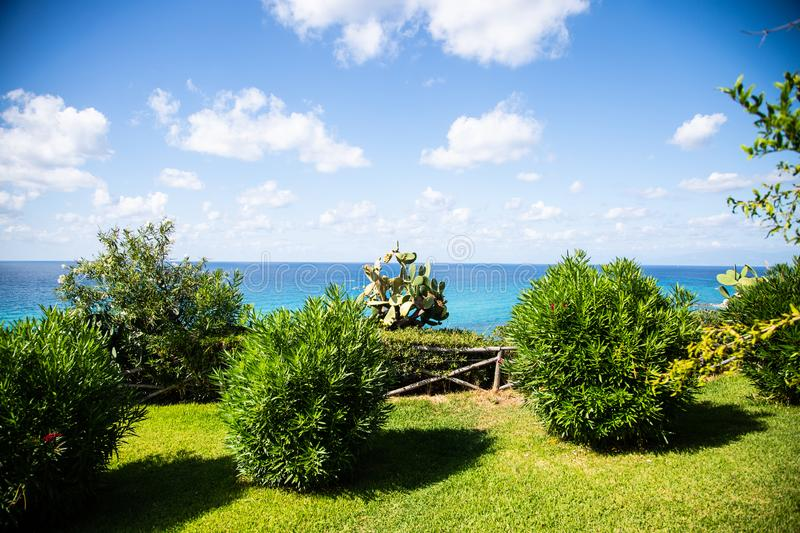 Prickly pears on the sea, Calabria, prickly pears on the tree stock photos