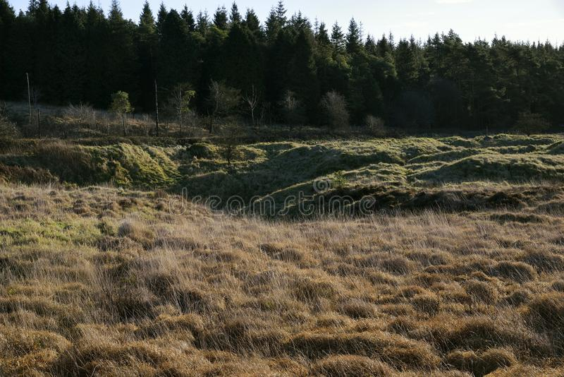Priddy Mineries. Low Winter Sun catches distrubed ground at Priddy Mineries, Mendip Hills, Somerset stock photography