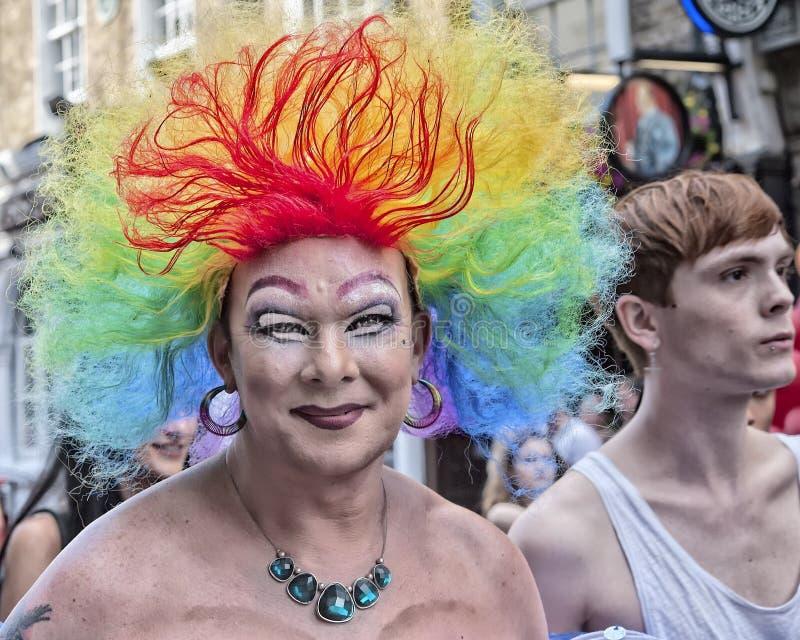 Pride hair 1 royalty free stock photo