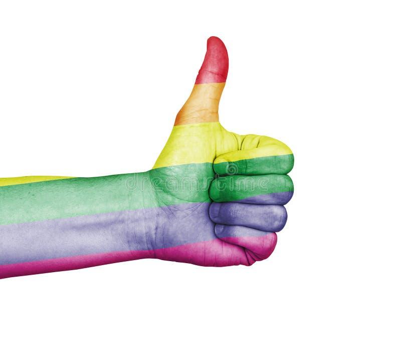 Pride Rainbow alegre - os polegares levantam a aprovação fotos de stock royalty free