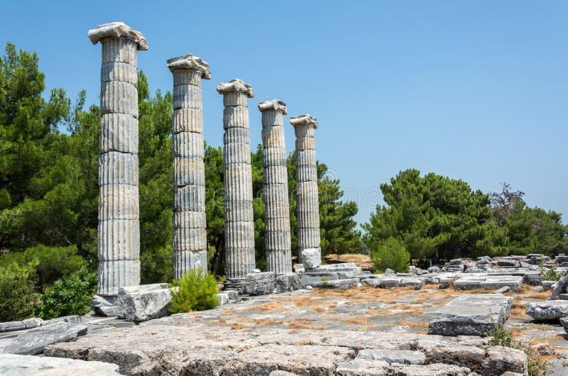 Priene古城废墟在土耳其 库存图片