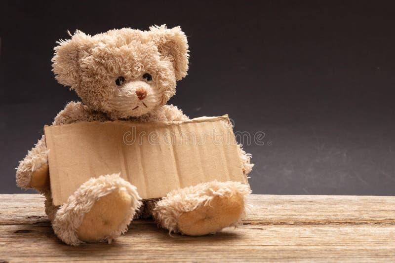 Prier sans abri pauvre d'enfant Ours de nounours triste, tenant un signe vide de carton photo libre de droits
