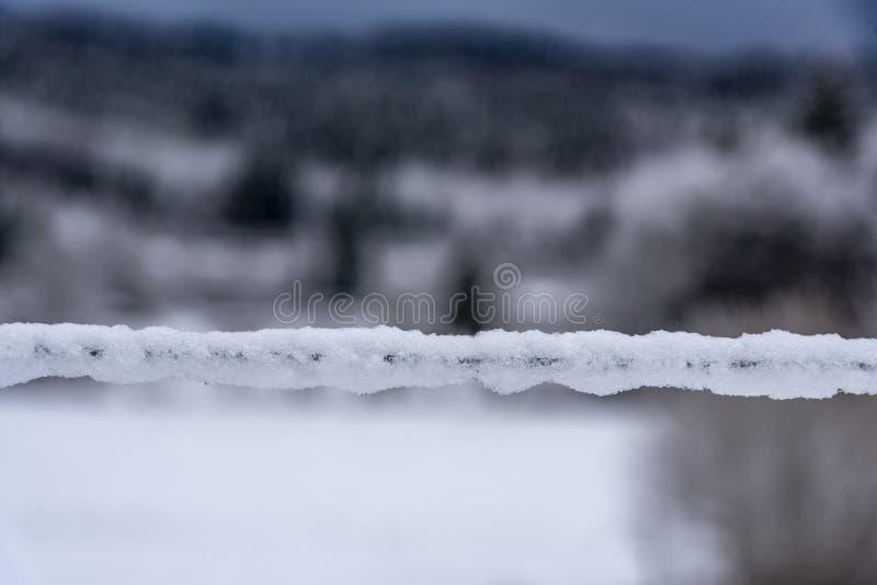 Prikkeldraad door dikke sneeuw wordt behandeld die stock fotografie