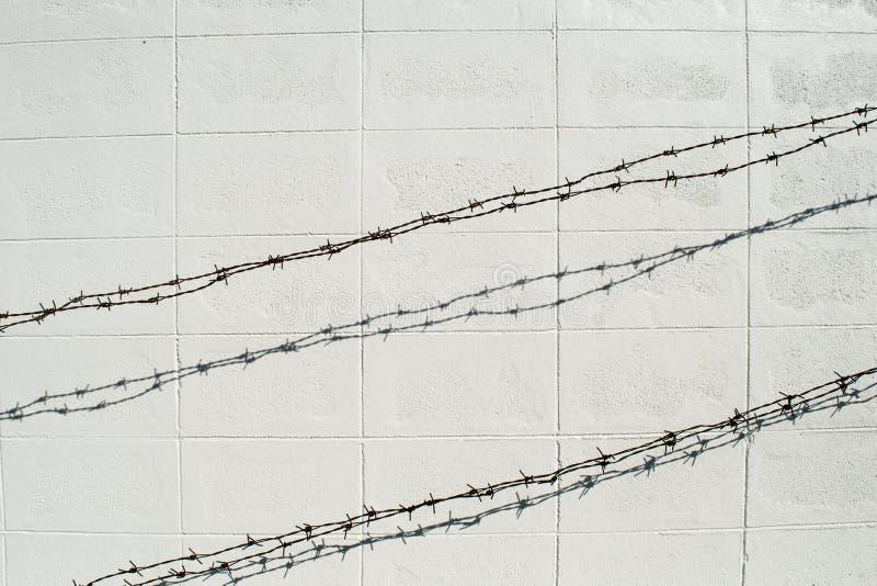 Prikkeldraad op witte blokmuur stock afbeelding