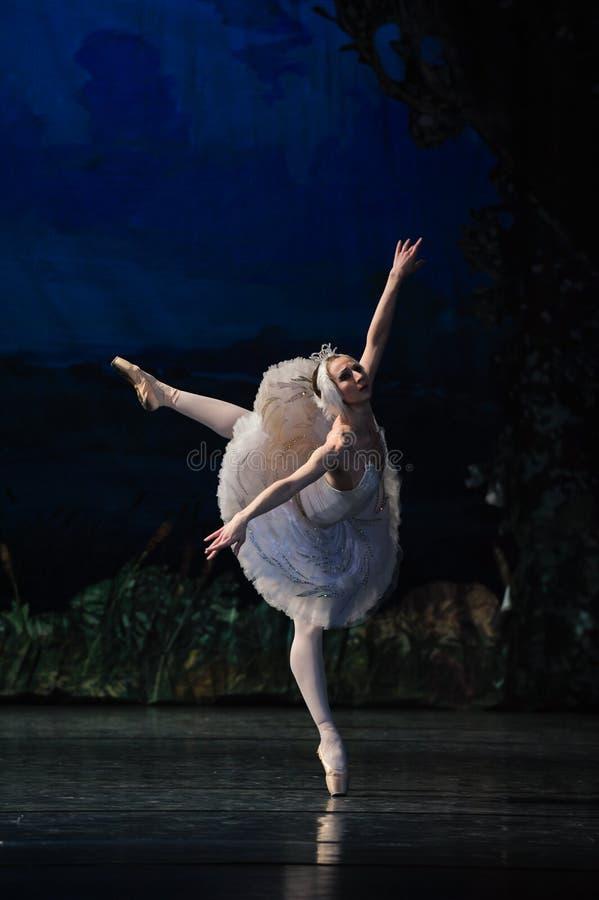 Prima Ballerina Staring på reflexionen i vatten royaltyfri fotografi