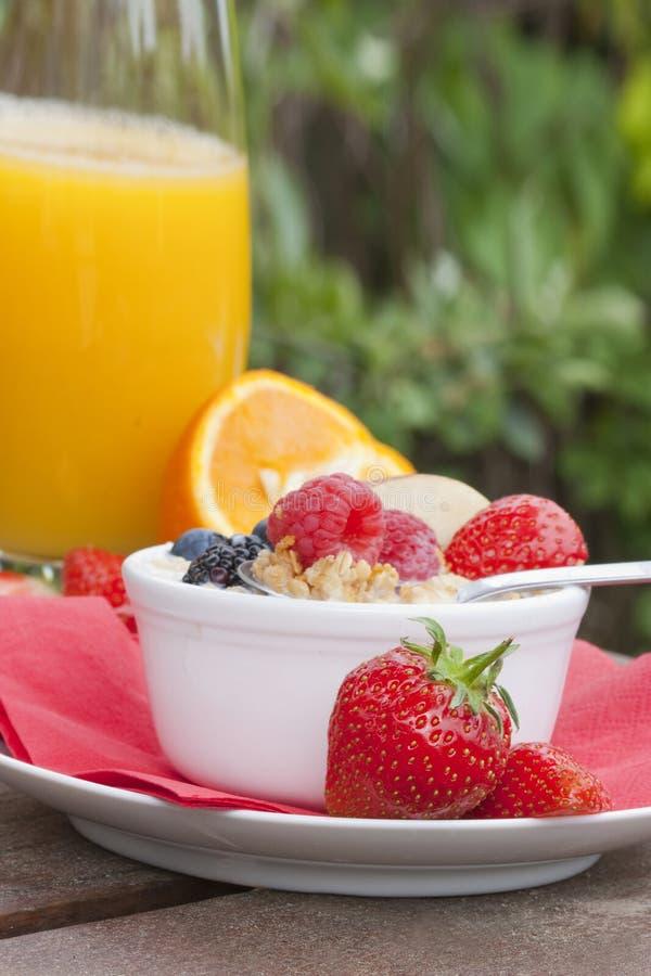Prima colazione nel giardino immagine stock