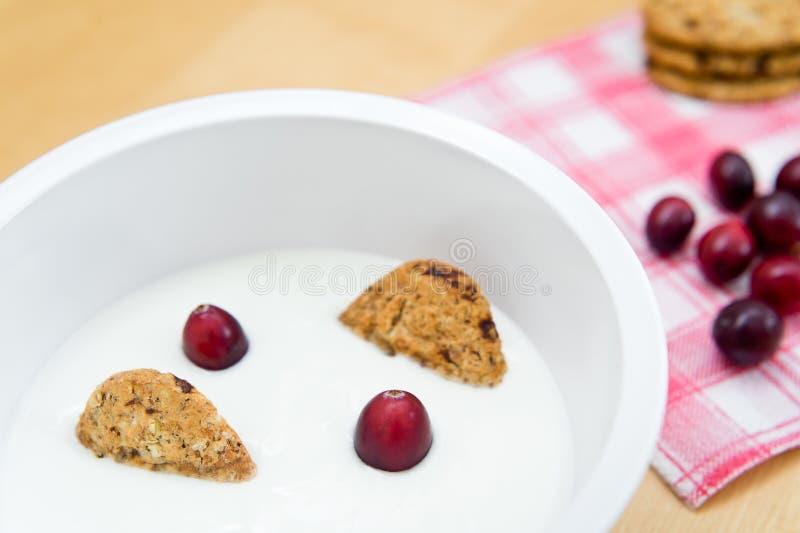 Prima colazione sana che contenente yogurt naturale, i biscotti integrali del cereale ed i mirtilli freschi fotografie stock libere da diritti