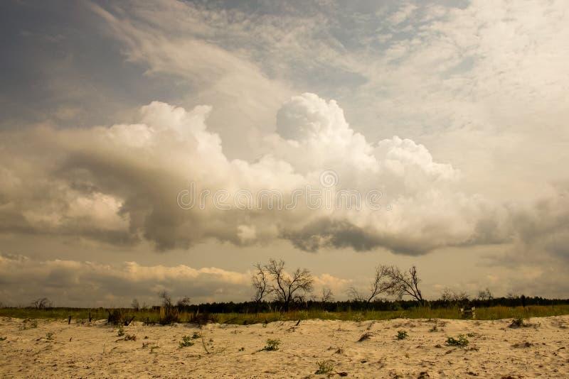 Prima di thunderstorm_1 fotografie stock