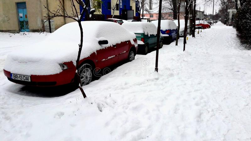 Prima neve fotografia stock libera da diritti