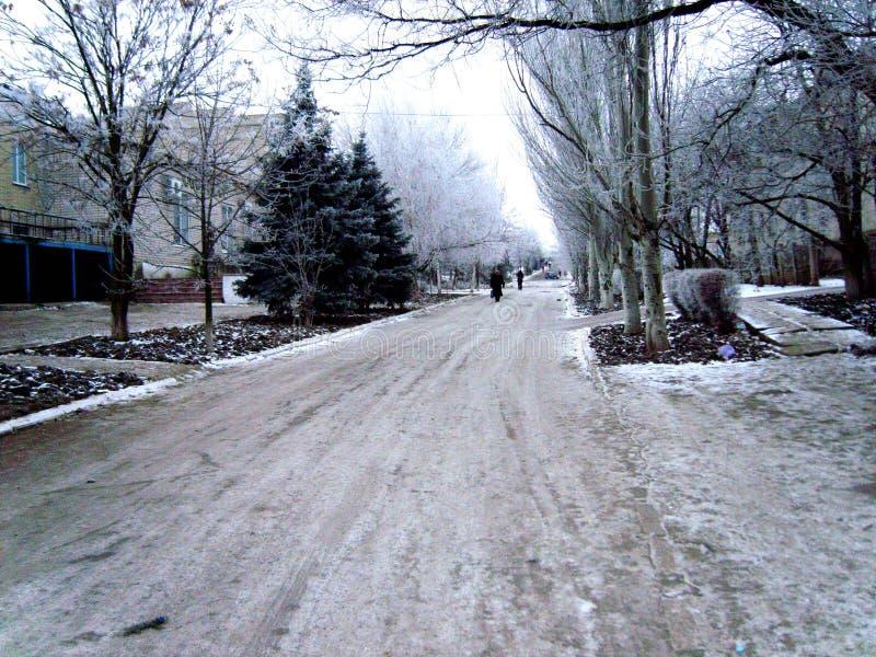 Prima neve fotografie stock libere da diritti