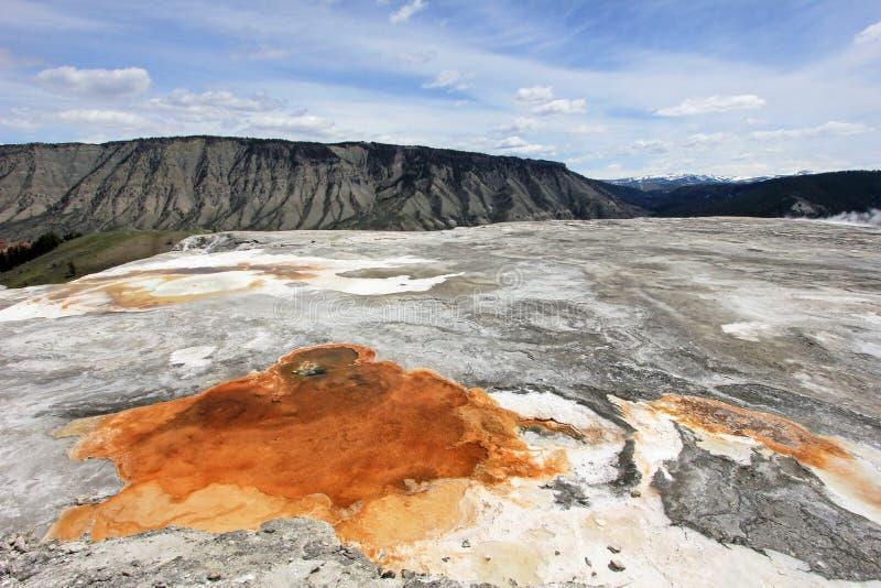 Primavera anaranjada agradable cerca del montón anaranjado de la primavera, parque nacional de Mammoth Hot Springs, Yellowstone,  fotografía de archivo libre de regalías