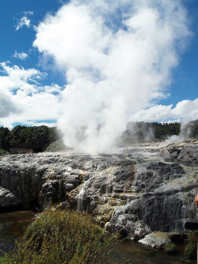Primavera caliente del fango, Rotorua, Nueva Zelanda foto de archivo libre de regalías