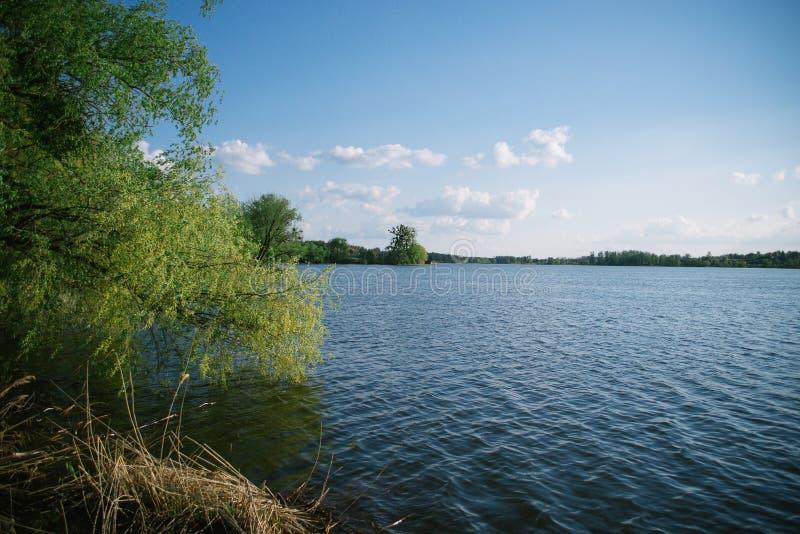Primavera che uguaglia paesaggio soleggiato vicino al fiume fotografia stock libera da diritti