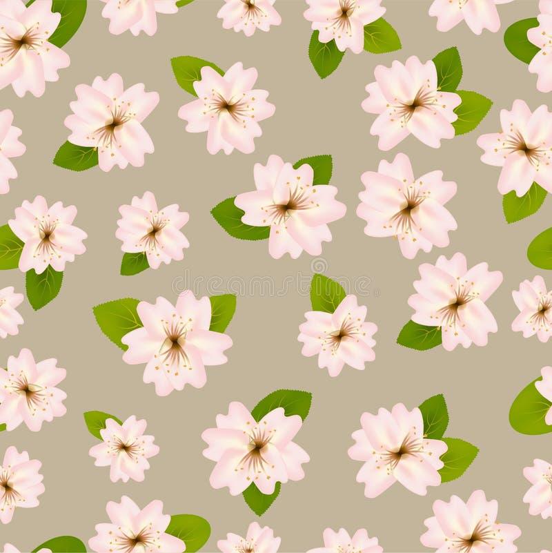 Primavera Cherry Blossoms Modelo?incons?til de ? con Japanese?Sakura Flores rosadas en fondo beige gris Ejemplo rom?ntico stock de ilustración