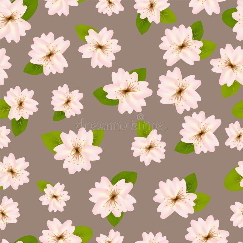 Primavera Cherry Blossoms Modelo?incons?til de ? con Japanese?Sakura Flores rosadas en fondo beige gris Llustration romántico stock de ilustración