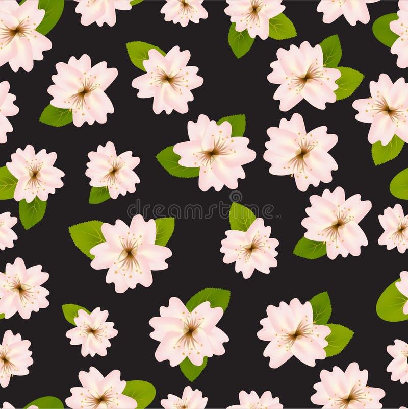 Primavera Cherry Blossoms Modelo?incons?til de ? con Japanese?Sakura Flores rosadas en fondo negro Ejemplo rom?ntico stock de ilustración