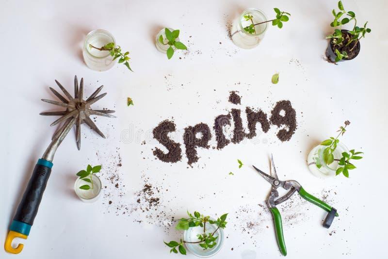 Primavera de la palabra de la tierra fotografía de archivo