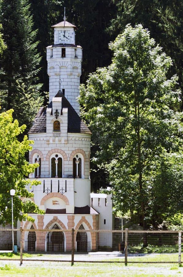 Primavera de Sentinela en Vatra Dornei, Rumania fotografía de archivo libre de regalías