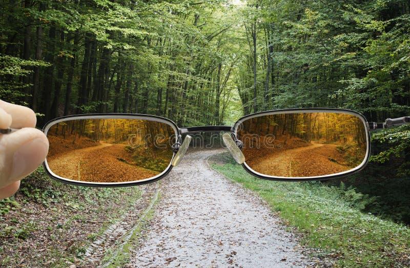 Primavera de torneado de Vision en otoño fotos de archivo