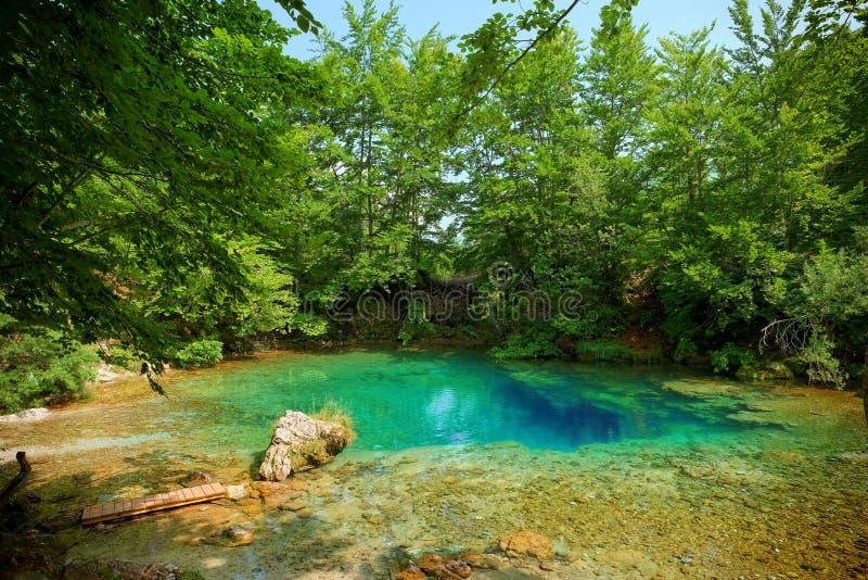 Primavera di acqua nel Montenegro fotografie stock