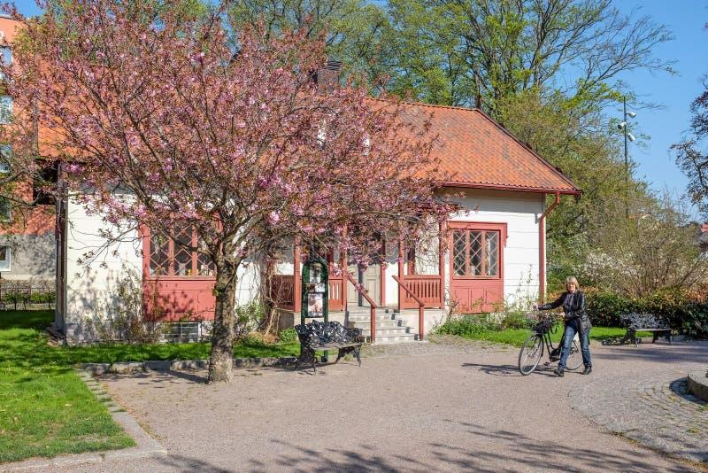 primavera em Linkoping, Suécia fotografia de stock