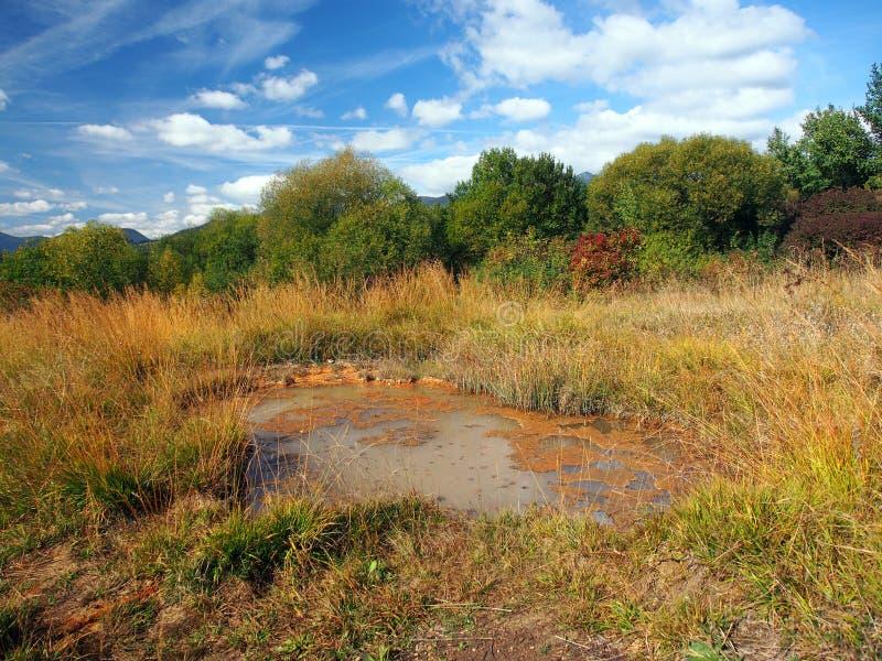 Primavera en Besenova, monumento natural, Eslovaquia imagen de archivo libre de regalías