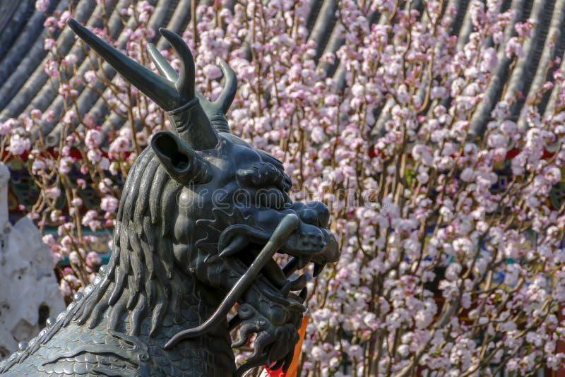 Primavera en el palacio de verano imagenes de archivo