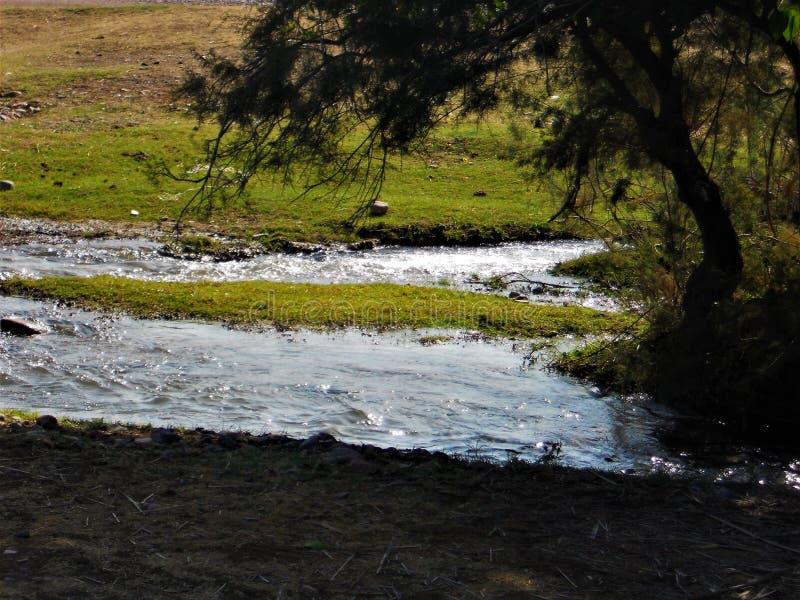 Primavera en las colinas de Chimgan imagenes de archivo