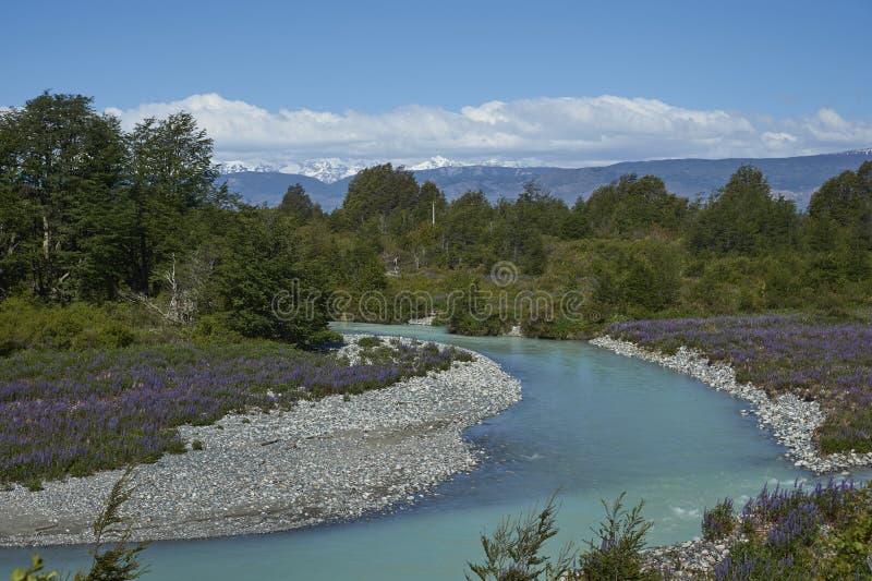 Primavera en Patagonia a lo largo del Carretera austral imagen de archivo