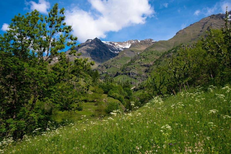 Primavera en Vallouise fotografía de archivo