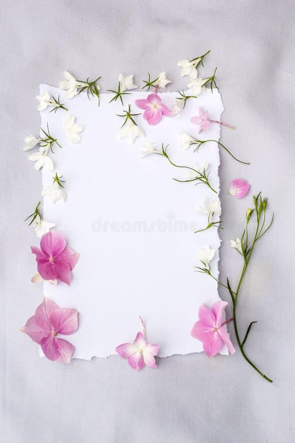 Primavera, fondo floreale con Libro Bianco e lobelia bianco immagini stock
