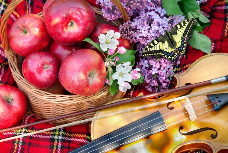 primavera Mele rosse fresche in un canestro di vimini nel giardino Picnic sull'erba Mele e violino maturi Plaid sull'erba, ap immagine stock