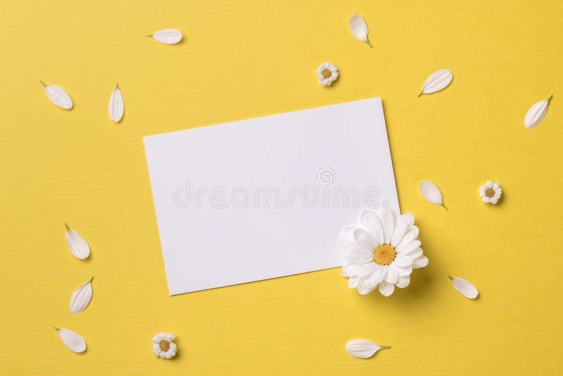 Primavera o fondo di estate con lo spazio della copia per testo immagini stock libere da diritti