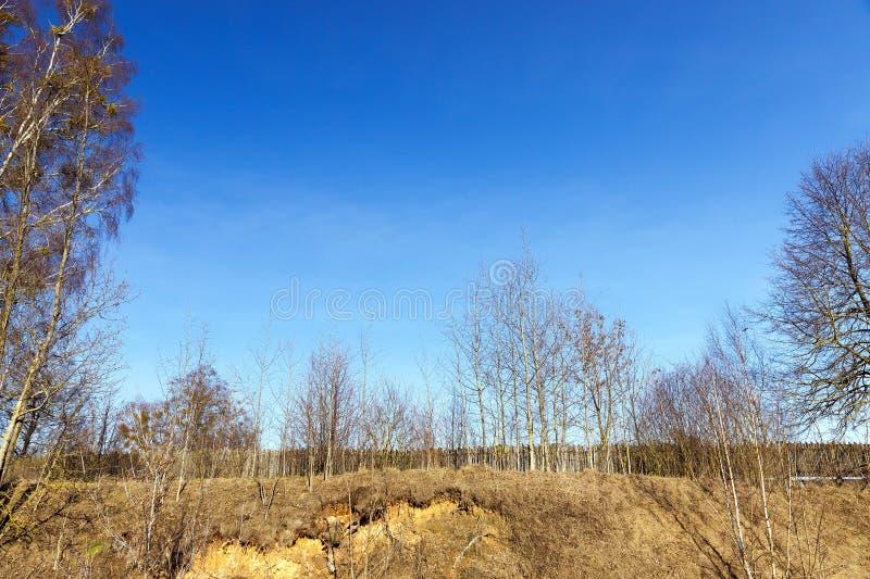 Primavera, recintata area immagine stock