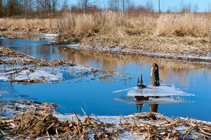 Primavera temprana, el hielo sale los lagos, hielo en la primavera en el río, hielo derretido descendido del lago imagen de archivo libre de regalías
