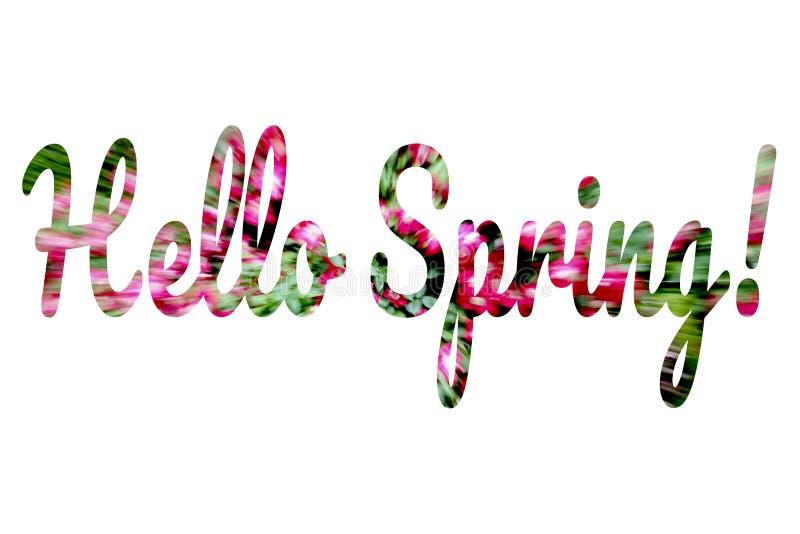 Primavera variopinta di parole ciao scritta su bianco royalty illustrazione gratis