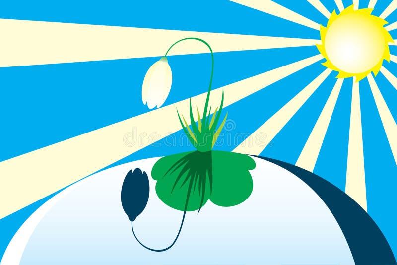 Primeira flor do snowdrop sob o sol da mola. ilustração do vetor