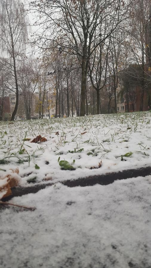 Primeira neve em Lituânia imagem de stock royalty free
