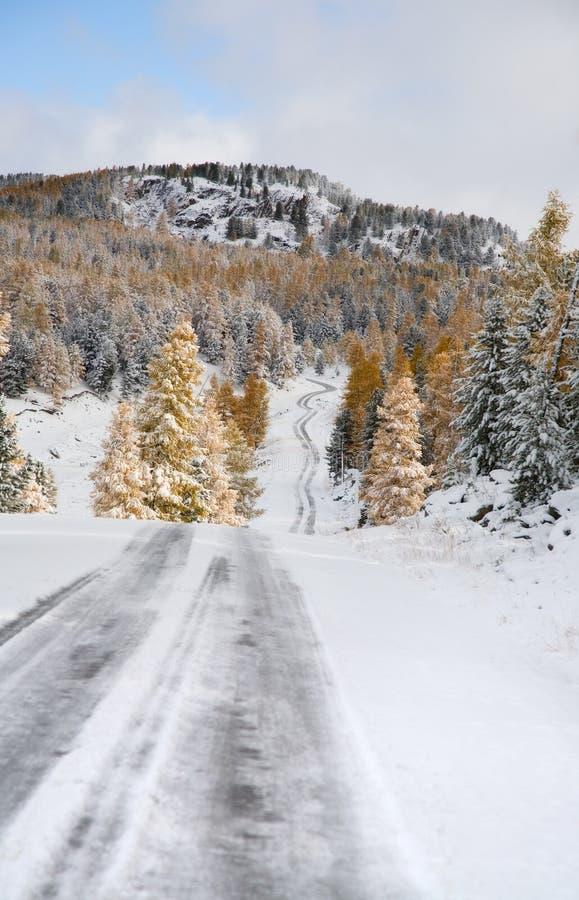 Primeira neve em uma passagem de montanha fotografia de stock