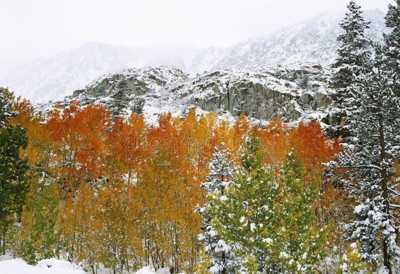Primeira neve nas montanhas fotografia de stock royalty free