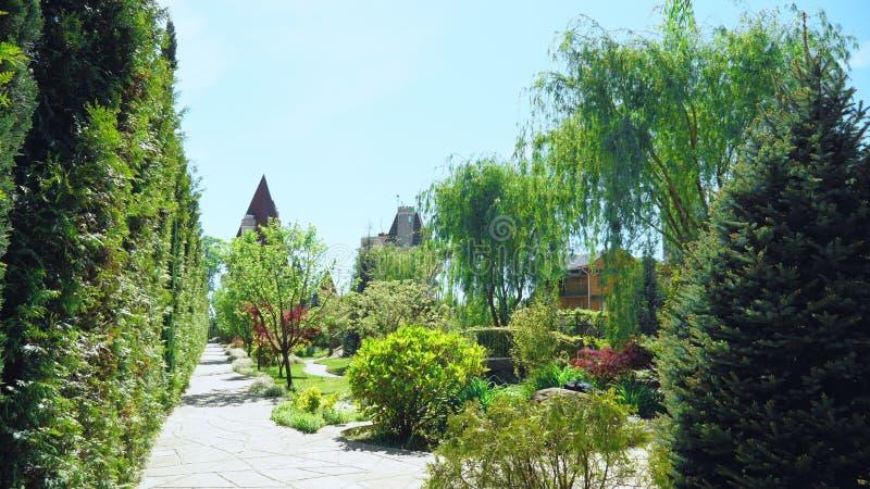 Primeira pessoa vista Caminhada ao longo das ?rvores ao longo de um trajeto em um parque bonito em um dia de ver?o ensolarado fotografia de stock