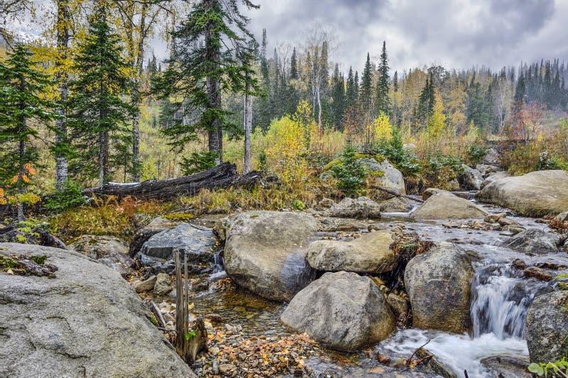 Primeira queda de neve em outubro na floresta montanhosa com riacho - paisagem de outono foto de stock