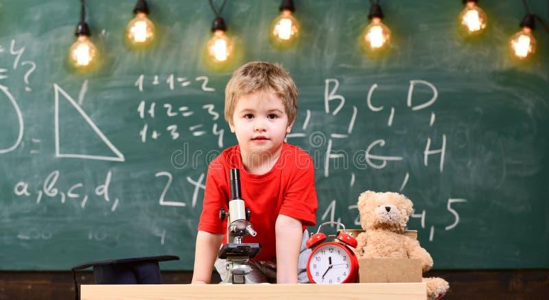 Primeiro interessado anterior no estudo, aprendendo, educação Criança na cara alegre perto do urso do pulso de disparo e de peluc foto de stock