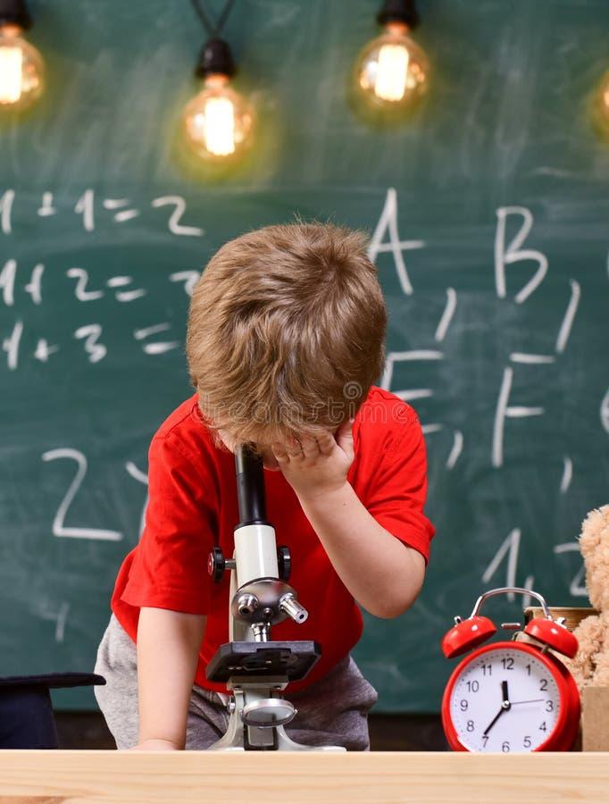Primeiro interessado anterior no estudo, aprendendo, educação O menino da criança olha no microscópio na sala de aula, quadro sob imagens de stock royalty free