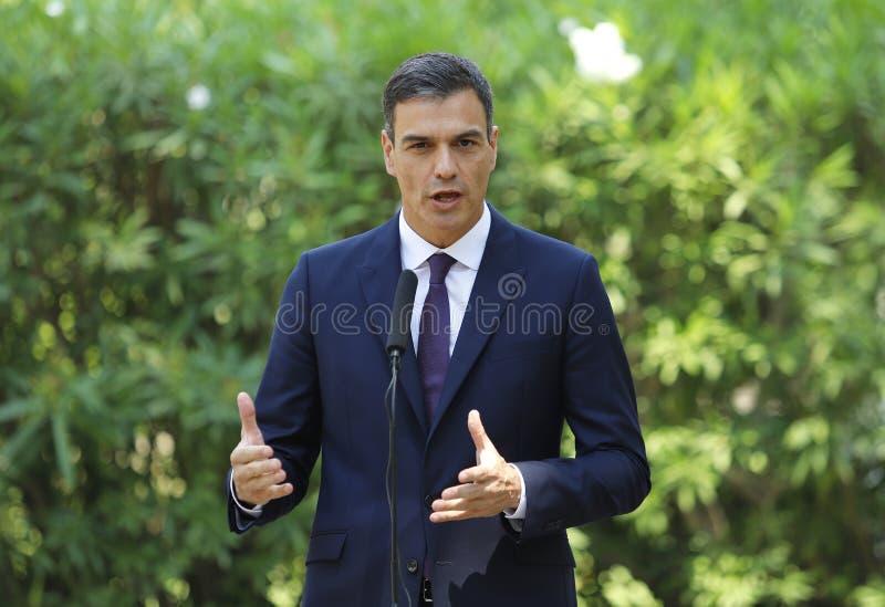 Primeiro ministro espanhol gesticular de Pedro Sanchez imagens de stock
