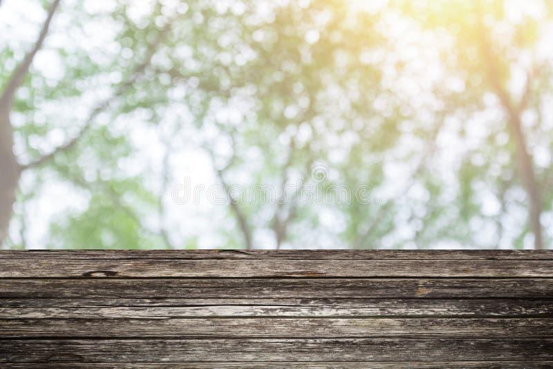 Primeiro plano de madeira da tabela com fundo da floresta do verde do borrão imagem de stock royalty free