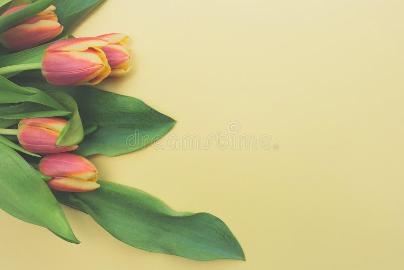 Primeiro ramalhete da mola de tulipas alaranjadas no espaço bege da cópia da opinião superior do fundo foto de stock royalty free