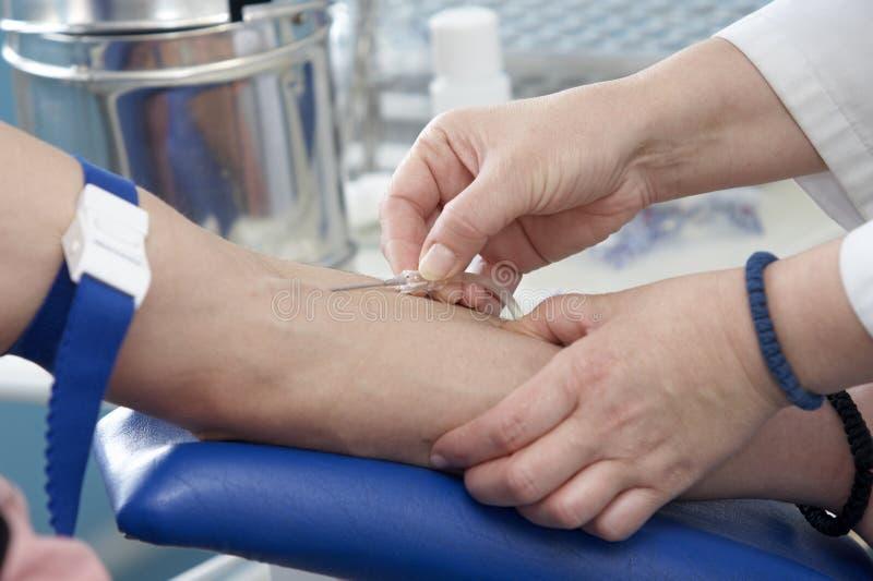 Primer 3 de la extracción de la sangre foto de archivo
