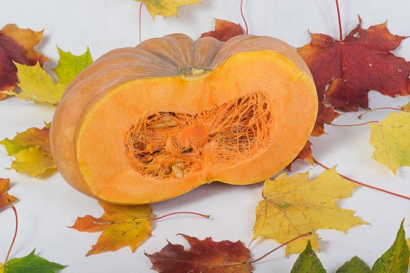 Primer anaranjado de la calabaza foto de archivo libre de regalías